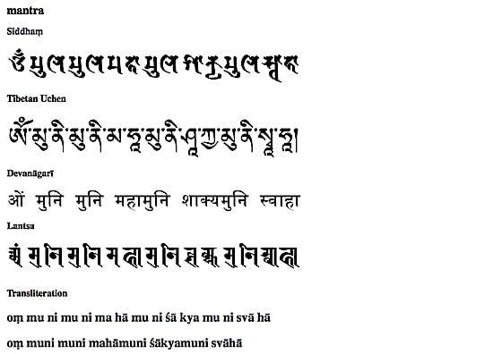 essay on karma in buddhism
