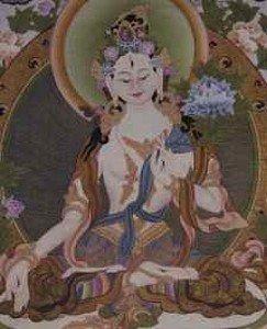 Buddha Weekly 0White Tara