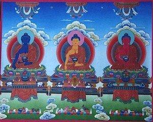 Buddha Weekly 0Medicine Buddha Shakyamuni Amitabha