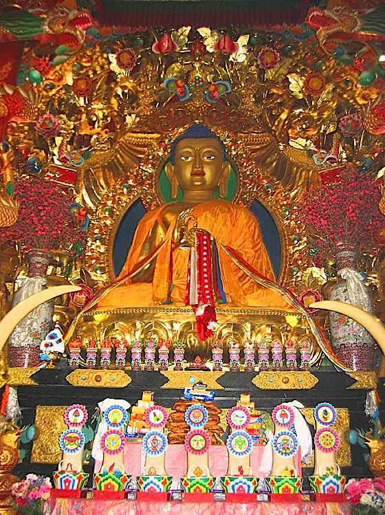 Guatama Buddha on Shrine