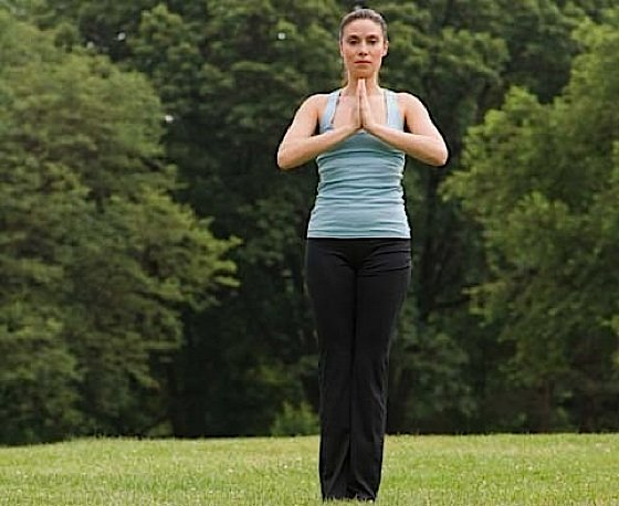 Namaste respect overcomes pride a universal greeting and a sign woman standing in meditation with hands held in prayer m4hsunfo