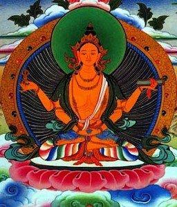 Buddha Weekly 2heartSutra