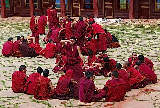 Have you ever wanted to learn to debate like a Buddhist monk? Venerable Zasep Rinpoche will teach students the important skills of debate and logic.