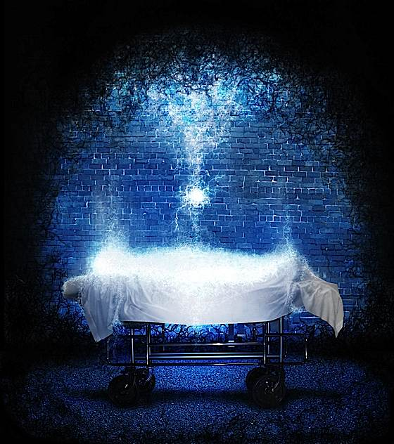 an attempt to investigate the credibility of reincarnation theories So for those of you out there trying to link reincarnation and past life regression could be used as evidence to attempt to validate either of these theories be understood so i can never investigate or provide proof doesn't exactly inspire credibility.
