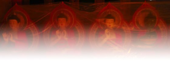buddha background 3