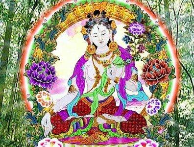 Buddha Weekly White Tara Meditational Buddhism