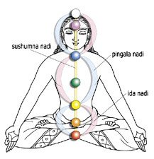 In one subtle interpretation of the vajra, the subtle body and nadis are mapped to the permitter outline (channels) and nadir (intersecting points of the vajra.