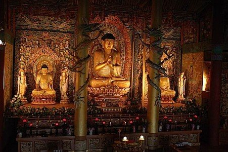 Buddha Weekly Buddha statues in a temple on Jejudo Buddhism