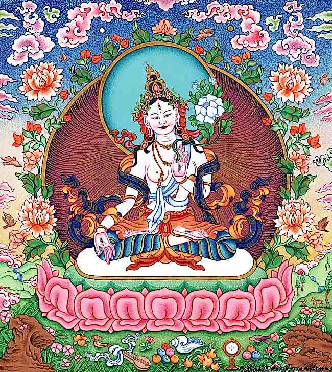 Visualizing White Tara. Important symbolic characterstics include white skin, the appearance of a beautiful young woman seated on a splendid Lotus throne and moon disc. White Tara has seven eyes, two eyes on her face, plus wisdom eye on her forehead, and eyes on each hand and foot.