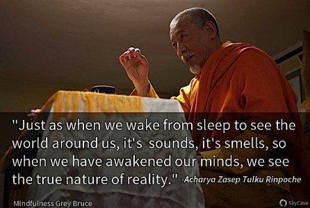 Rinpoche Leapfrog Lighting