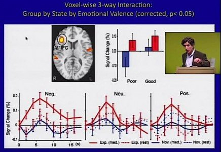 Buddha Weekly Changes in insula in brain caused by negative stimuli Buddhism
