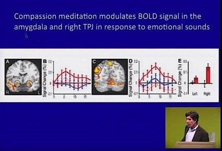 Buddha Weekly Compassion Modulates Bold Signal in the Amygdala