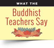 """What the Buddhist Teachers Say"" is a long-running feature series. We pick a topic, then seek the opinions/ quote/ guidance of at least five teachers."