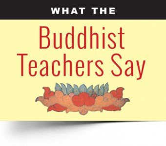 """What the Buddhist Teachers Say"" is a long-running feature series. We pick a topic, then seek the opinions/ quote/ guidance of at least five teachers. DO YOU HAVE A TOPIC YOU'D LIKE TO PROPOSE?"