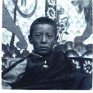 Zasep Tulku at 11 years of age.
