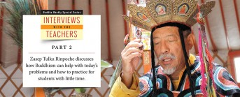 Part 2 of Interview with the Teachers: Zasep Tulku Rinpoche discusses how Buddhism can help with today's problems; on how we should think of hell realms and reincarnation; and how to practice when you have so little time.