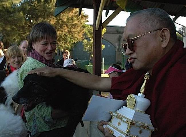 Lama Zopa Rinpoche giving blessings of a dog at teachings.