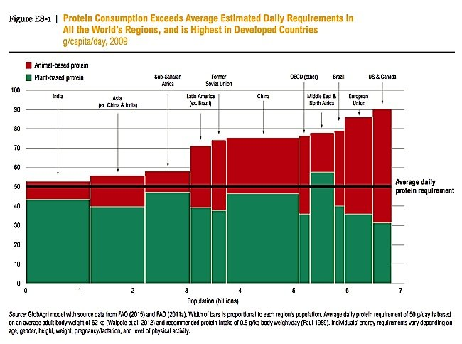 Protein consumption exceeds estimated daily requirements around the world.