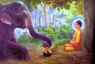 Buddha is often portrayed in stories and illustrations with animals.