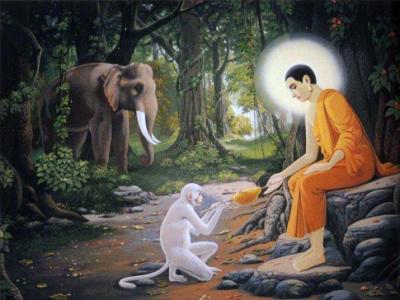 Buddha with monkey and elephant