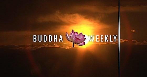 Buddha Weekly Buddha Weekly New Video Series Trailer What the Teachers Say Buddhism