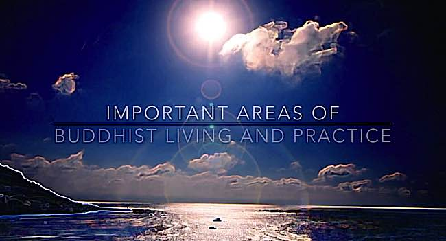 Buddha-Weekly-Buddha Weekly Videos Featuring Important Areas of Buddhist Practice-Buddhism