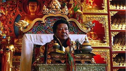 Buddha Weekly Choje Akong Tulku Rinpoche on throne Buddhism