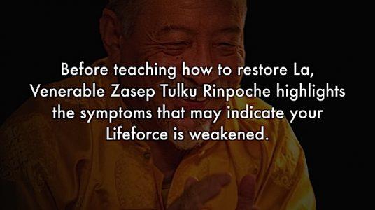 Buddha Weekly Symptoms of losing La Zasep Tulku Rinpoche Buddhism