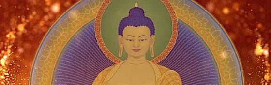 Buddha Weekly Visualizaton Shakyamuni Buddha Close Up Buddhism