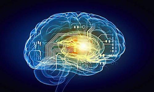 Buddha Weekly Rewire the brain Buddhism
