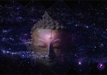Buddha Weekly Buddha mind is oneness with all Buddhism