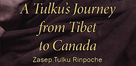 Buddha Weekly A Tulkus Journey from Tibet to Canada Buddhism