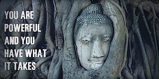 Buddha Weekly You are Powerful Let Freedom Reigns Yoko Dharma Buddhism