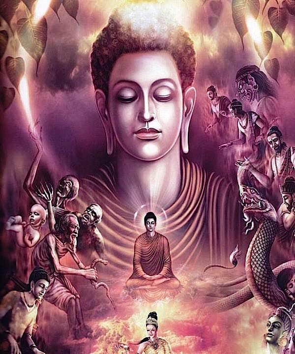 Buddha Weekly Buddha Meditates Buddhism