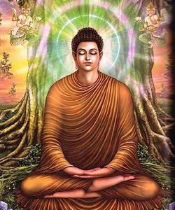 Buddha Weekly Buddha attains enlightenment Buddhism