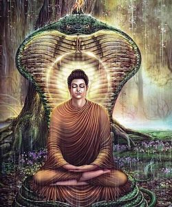 Buddha Weekly Buddha protected from rain by naga king Buddhism