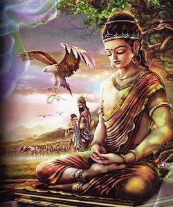 Buddha Weekly Young Buddha Buddhism