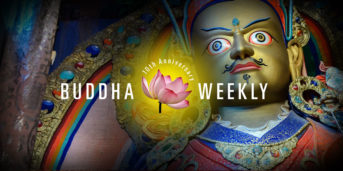 Buddha Weekly Celebrates 10 Years of Publishing Buddhist Feature Stories, Teacher Interviews, and News: We Look Back at Our Successes and Failures