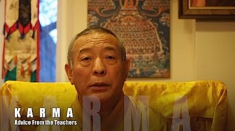 Advice from the Teachers: How do we purify negative karma? Do you have advice for people confused by karma?