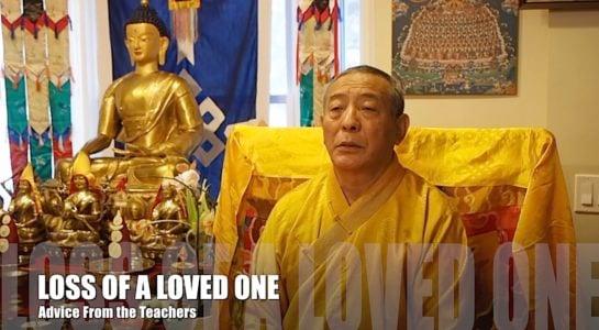 Buddha Weekly Zasep Tulku Rinpoche loss of a loved one video advice Buddhism