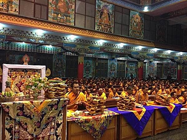Buddha Weekly RInpoches celebrate Losar Buddhism