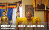 Using Mindfulness to Combat Memory Loss, Early Alzheimers or Dementia: Helpful Video Advice from Buddhist Teacher Venerable Zasep Tulku Rinpoche, with the full Satipatthana Sutra