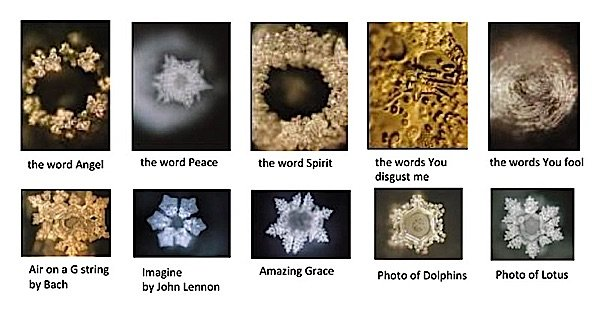 Image result for emoto masaru