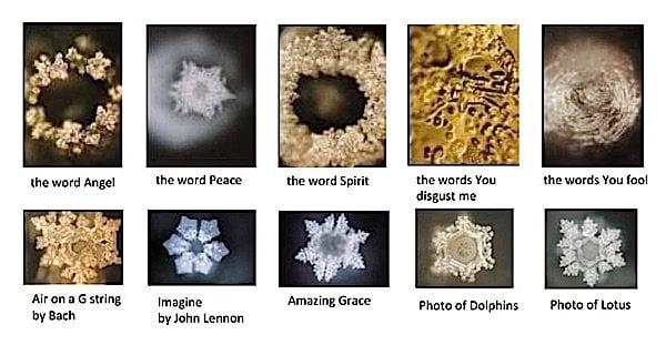 Buddha Weekly Crystal code of water Masaru Emoto Buddhism
