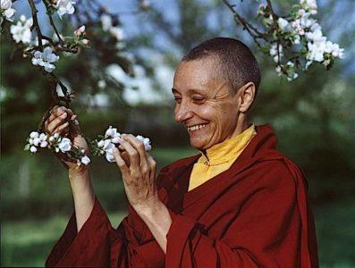 Buddha Weekly TenzinPalmoblossomsFeb2002Edited Buddhism