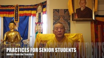 Video Buddhist Advice 9: How Can Advanced Vajrayana Students Simplify and Manage Commitments and Practice? Answered by Venerable Zasep Tulku Rinpoche