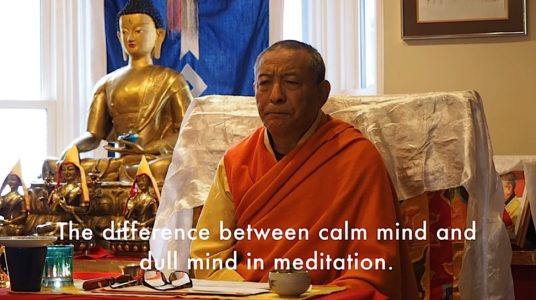 Buddha Weekly Zasep Rinpoche Difference Calm Mind and Dull mind Buddhism