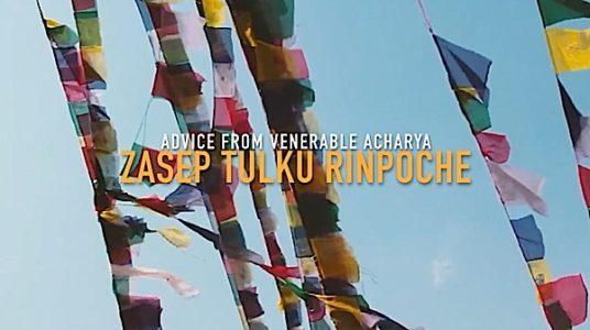 Buddha Weekly Zasep Tulku Rinpoche Advice Buddhism