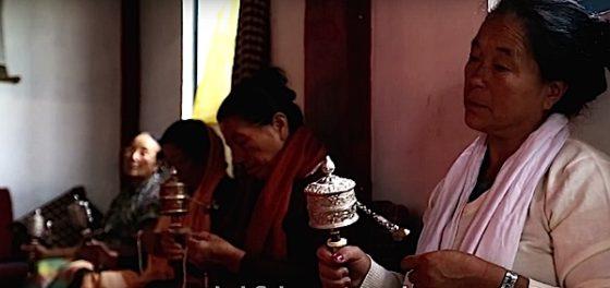 Buddha Weekly meditators spin prayer wheels at monestary in sikkhm Buddhism