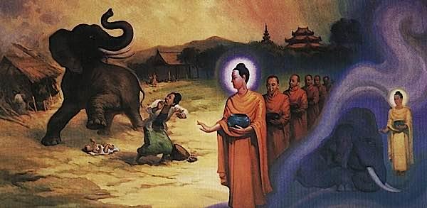 Buddha Weekly Abhaya Mudra Buddha Subdues the fierce elephant released by Devadatta Buddhism